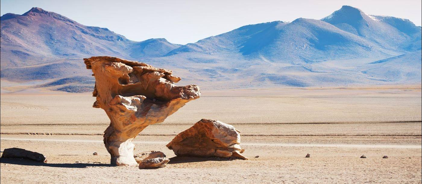 A stone tree rock formation in the Eduardo Avaroa Andean Fauna National Reserve of Sur Lípez Province, Bolivia.