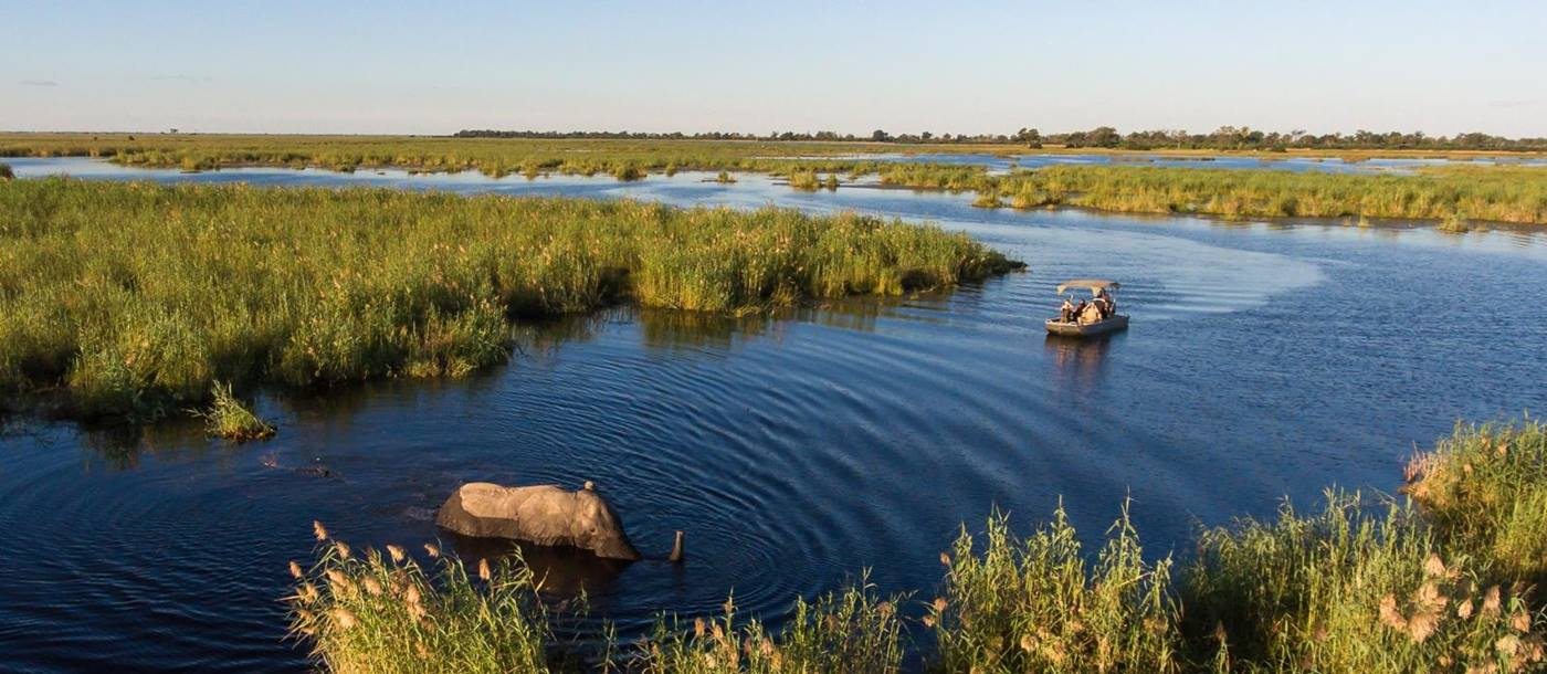 Boat Safari under blue skies in the Okavango viewing an elephant in the water