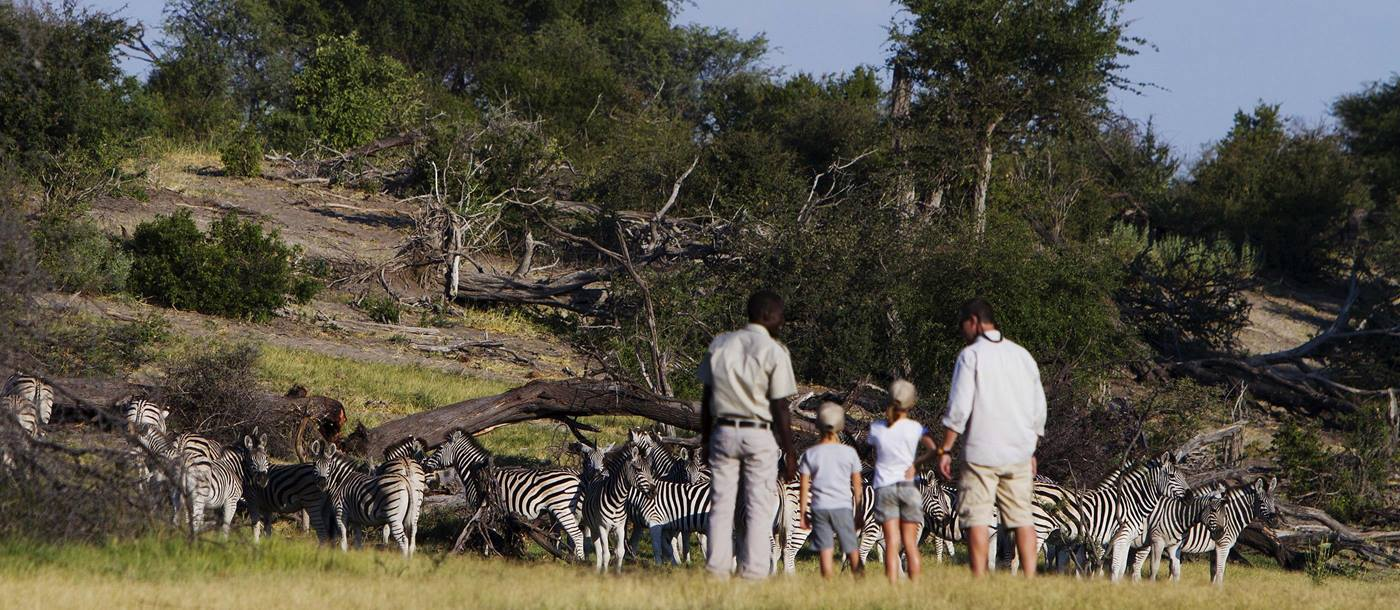 Zebras and guests at Leroo La Tau