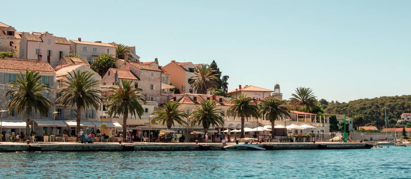 Palm Tree lined Promenade in Hvar