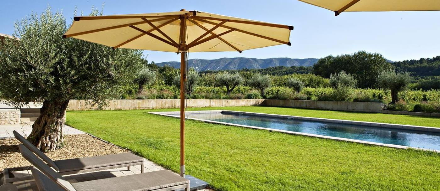 Sun loungers, umbrellas, olive tree and lawn next to pool with mountain view at Domaine des Baumettes in Provence, France