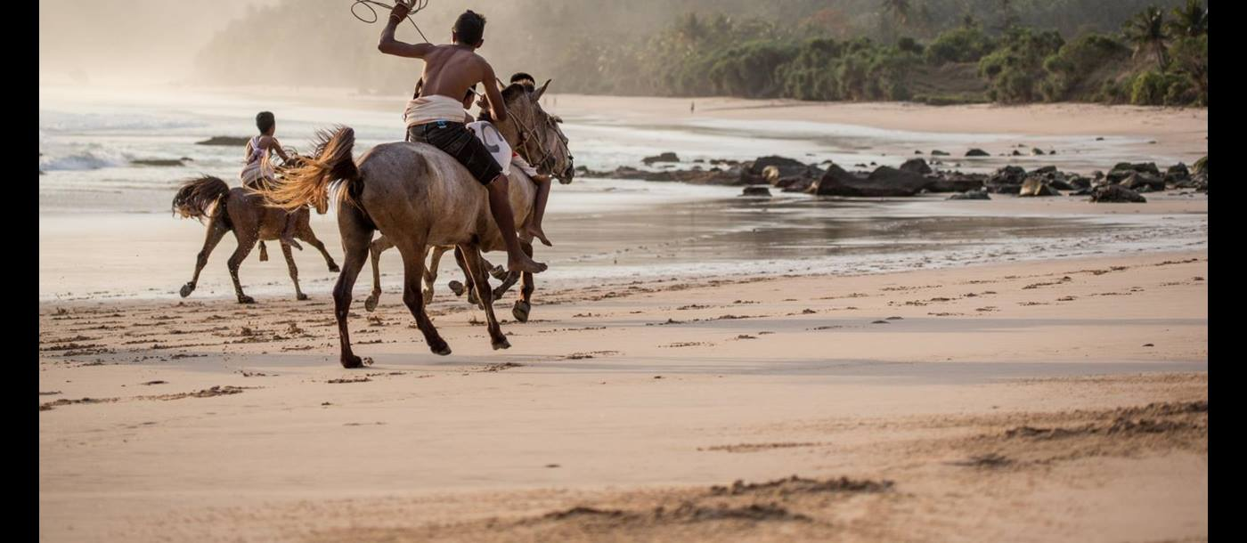 horse riding on the beach at Nihiwatu, Indonesia