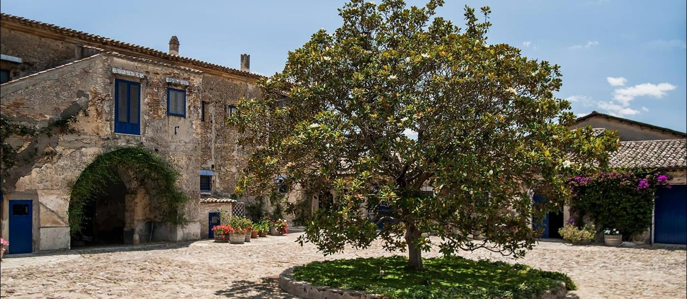 Square at Tenuta Reglaleali surrounded by old buildings and a lush green tree in the centre