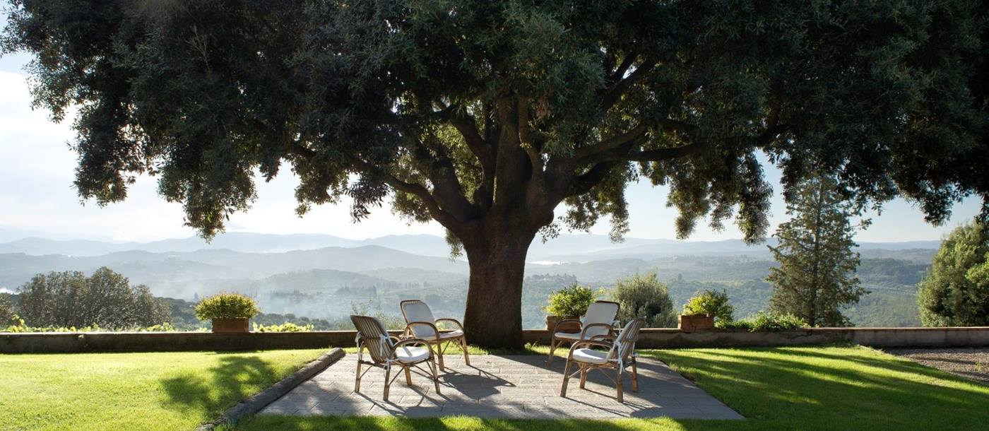 Large tree with outdoor seating at San Morello in Tuscany