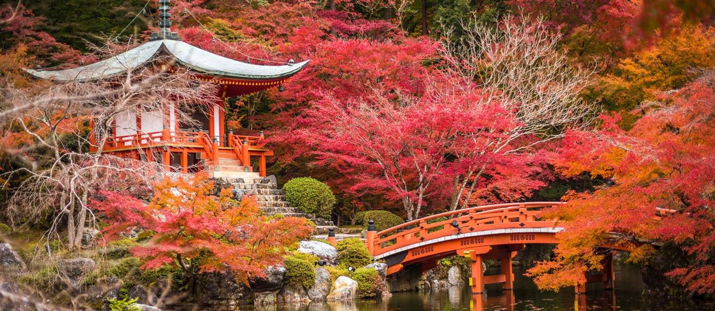Daigoji Temple, a designated world heritage site southeast of central Kyoto in Japan, with red maple trees and a bridge over a lake in front