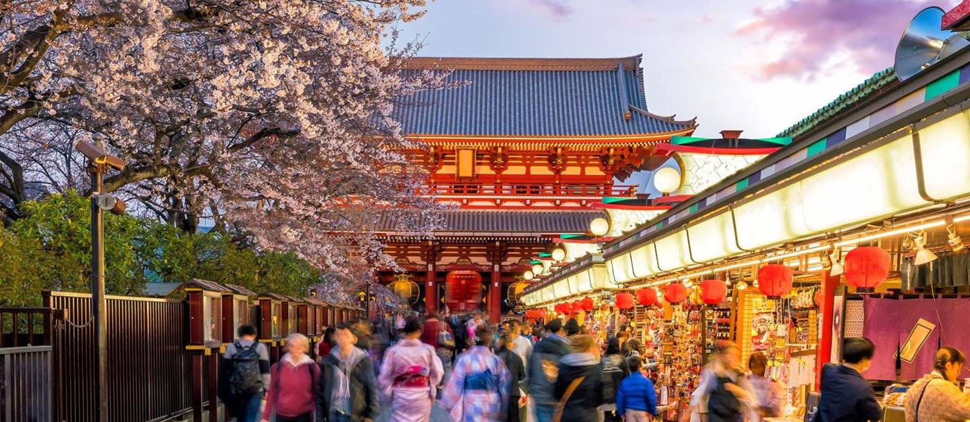 A shopping street in Tokyo with a cherry blossom tree and temple in the background