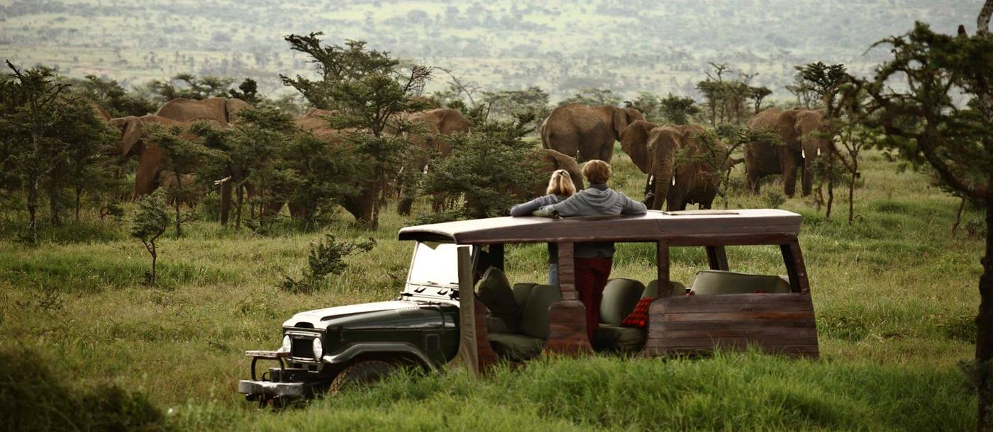 A game drive from Enasoit in Kenya