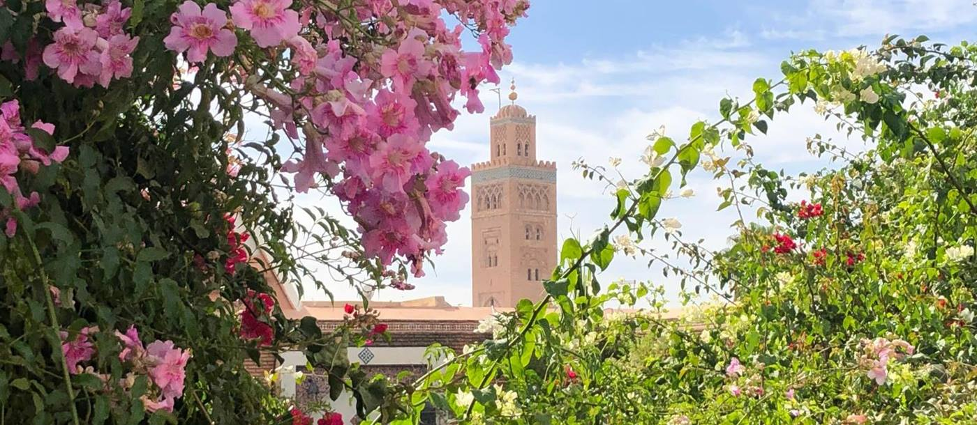 Flowers and distant view of the medina in Marrakech Morocco