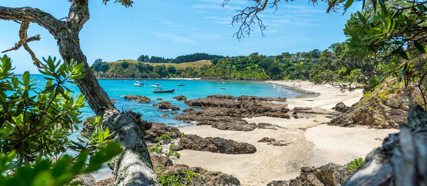 Waiheke Island in New Zealand