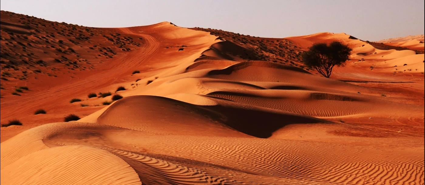 The Wahiba Sands, Oman