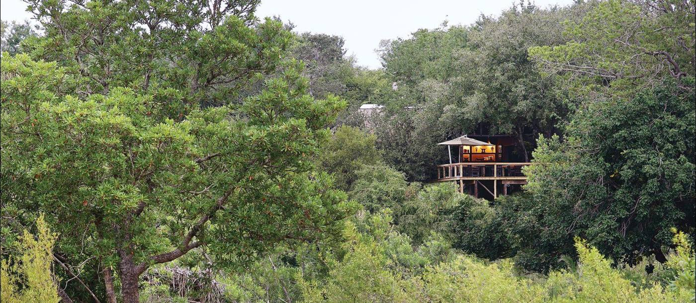 Exterior of Londolozi Tree Camp in South Africa