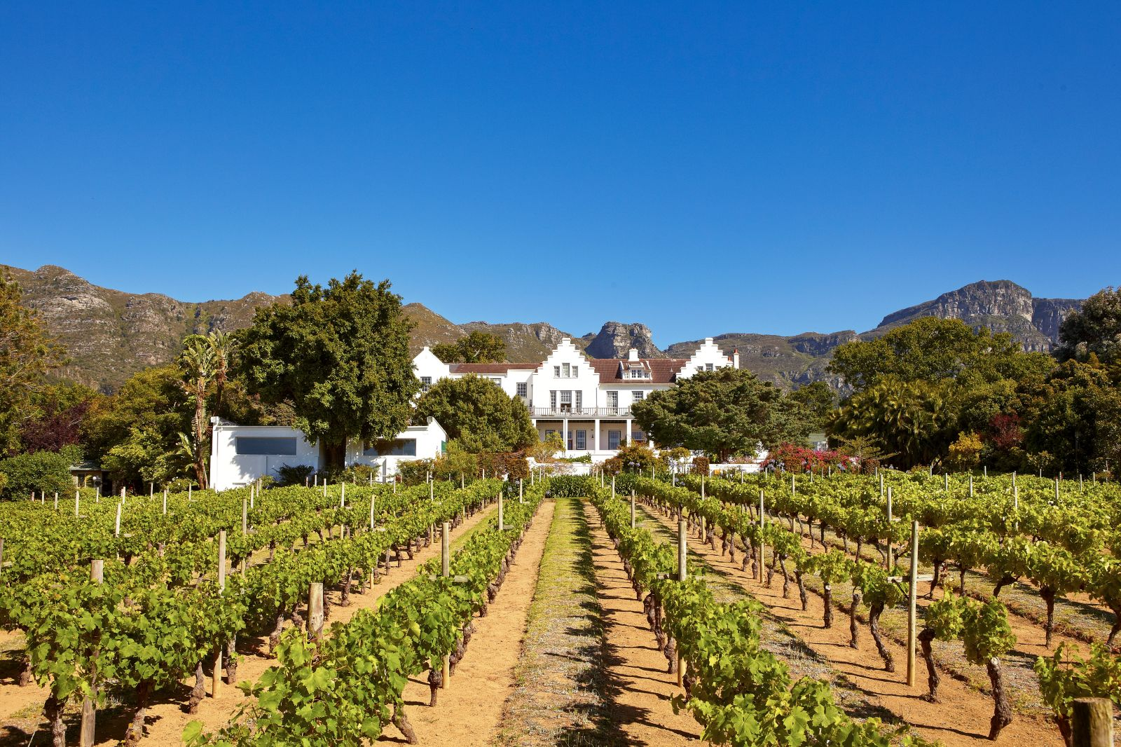 Grounds and vineyards of The Cellars Hohenort in South Africa