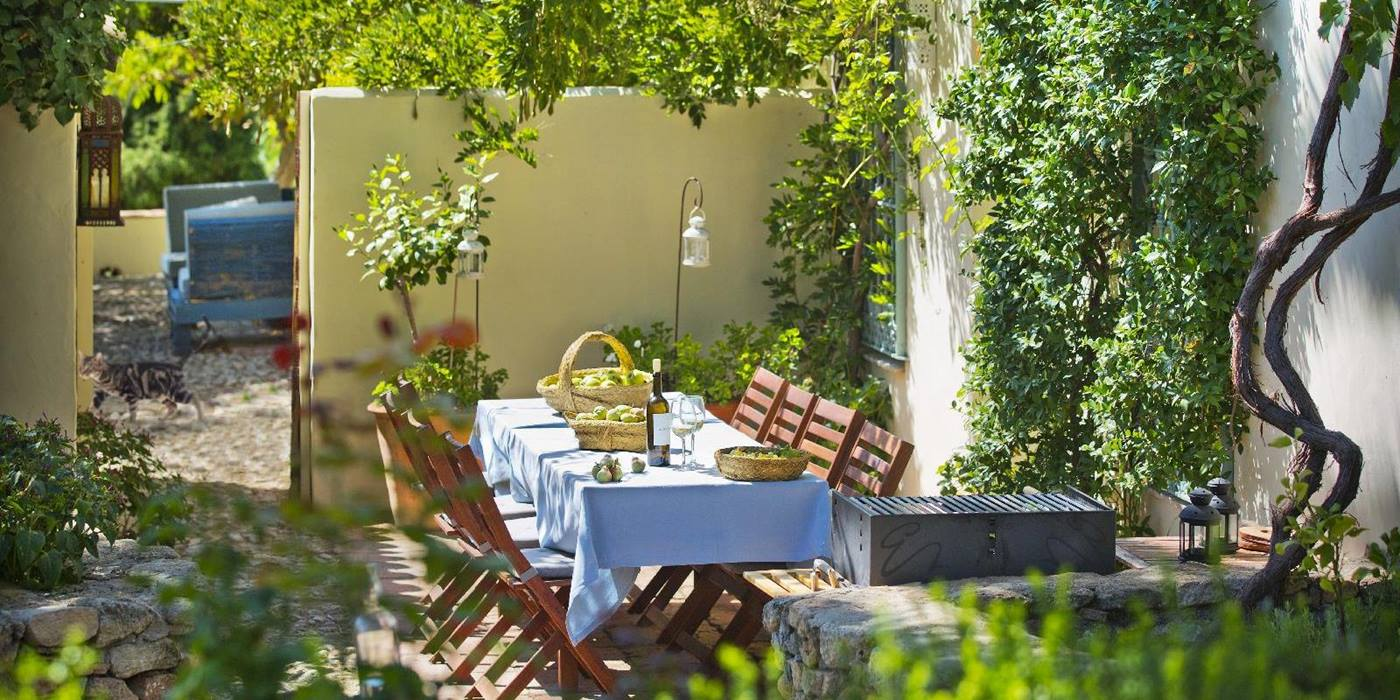 Dining table under vines at Pero di Ronda, Andalucia