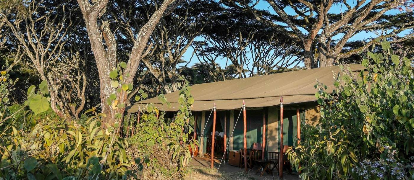 Tent exterior at Lemala Ngorongoro Tented Camp in Tanzania