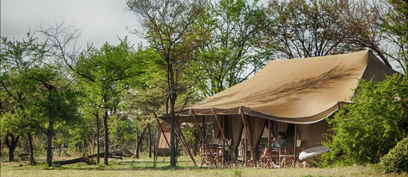 Tent exterior in the morning at Serian's Serengeti North Camp in Tanzania