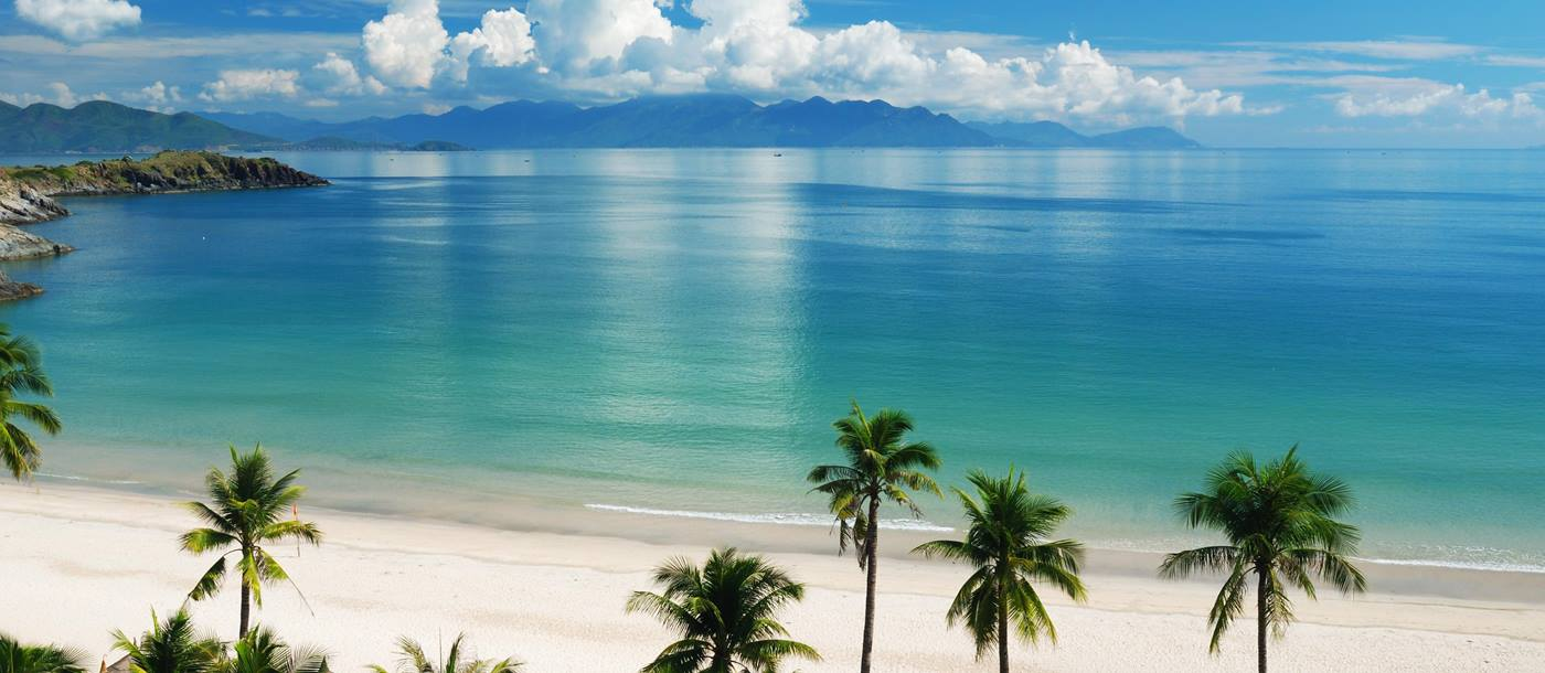 Palm trees and golden sand Nha Trang beach in Vietnam